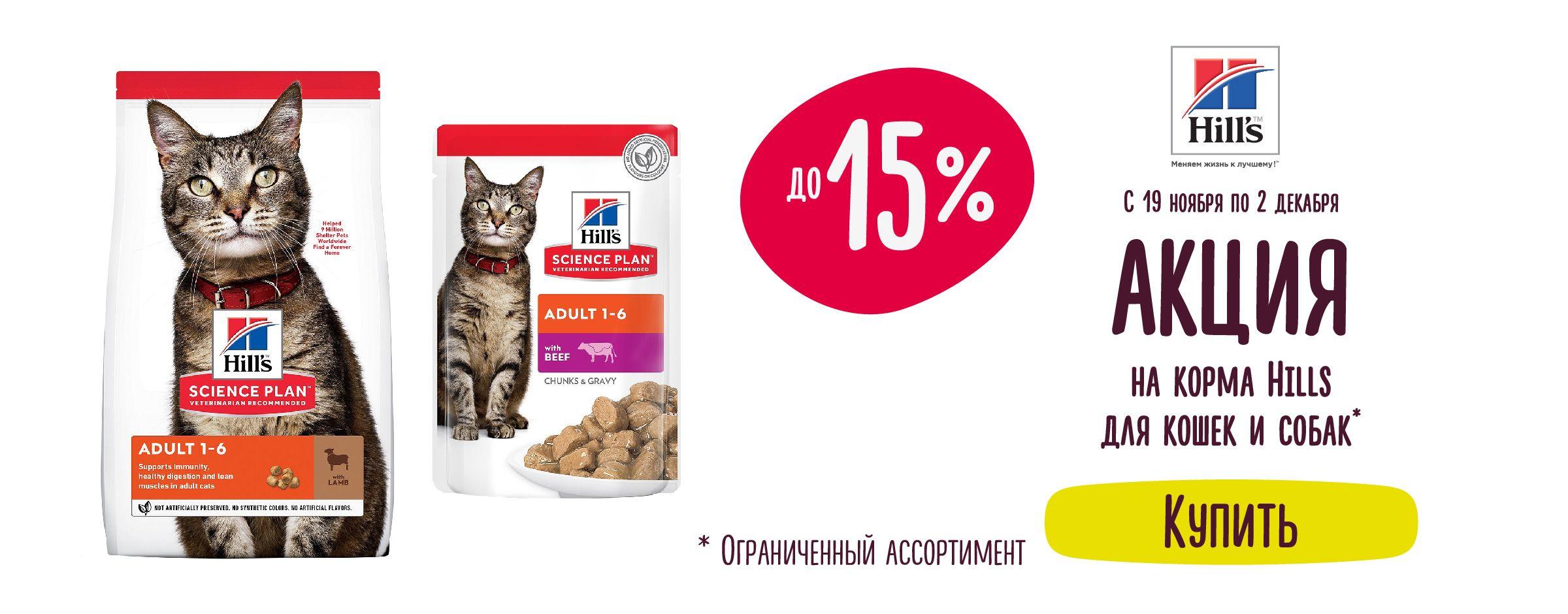 Скидка до 15% на корма Hills для кошек и собак== Листовка23