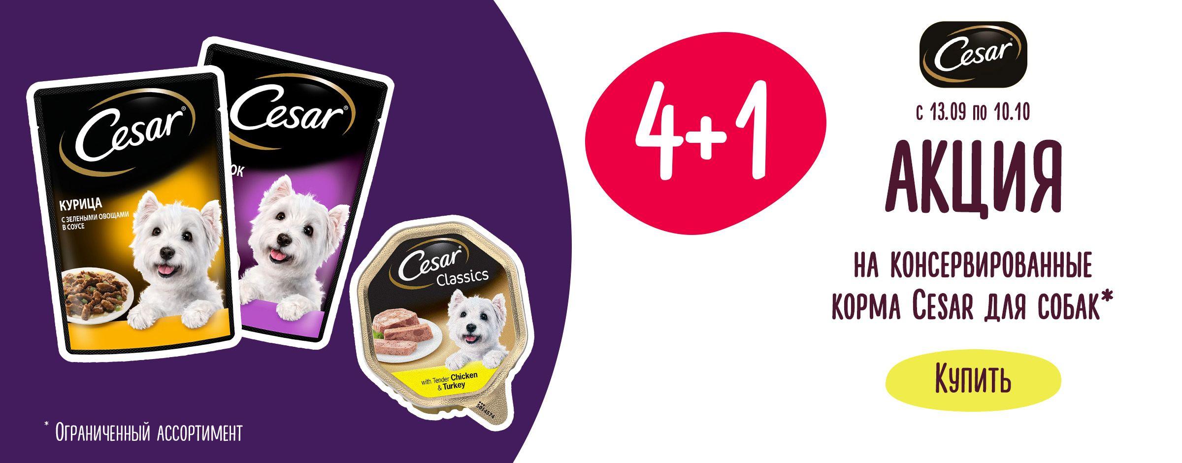 Акция 4+1 на консервированные корма Cesar для собак