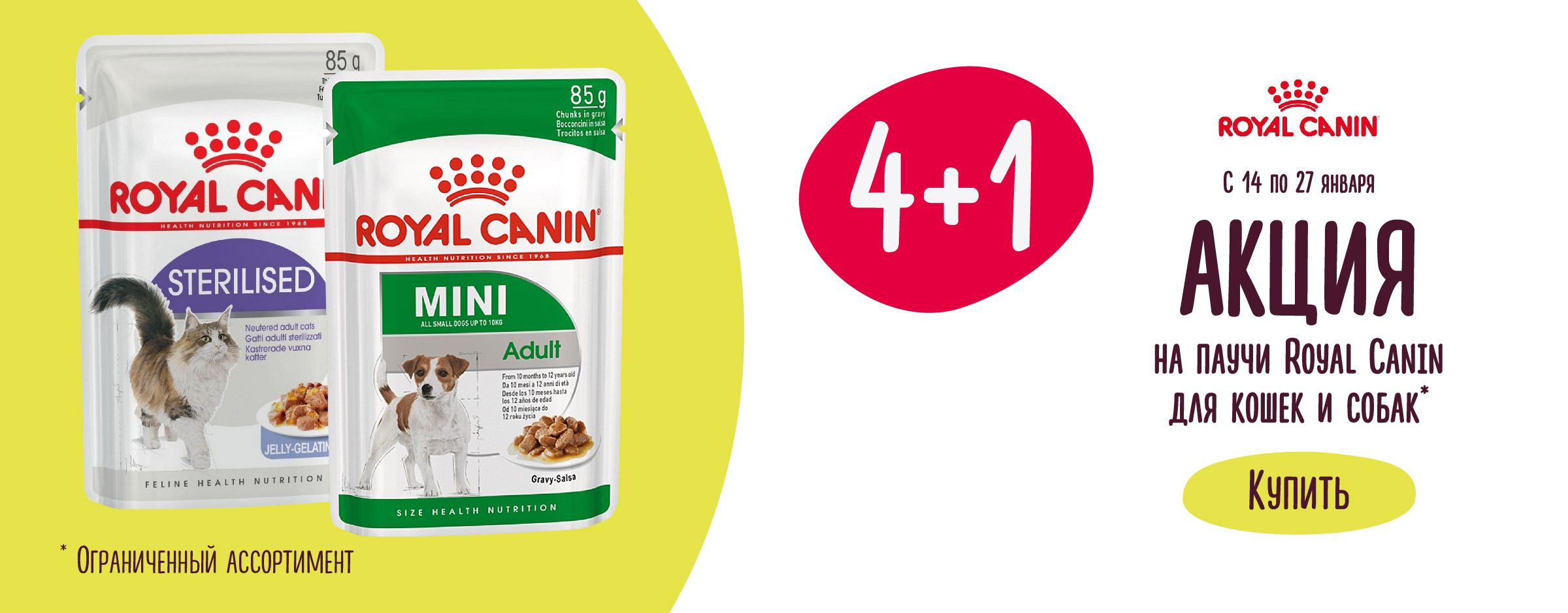 Royal Canin Листовка 1
