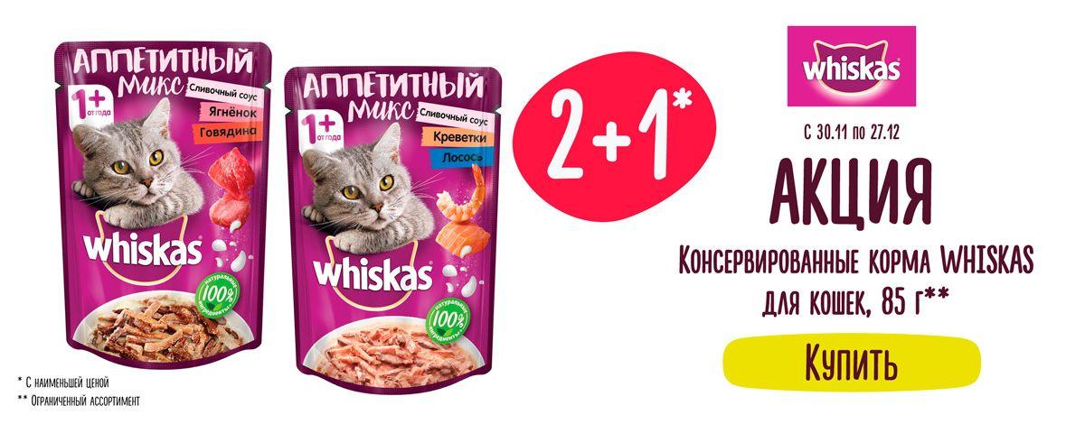 Whiskas==Листовка24